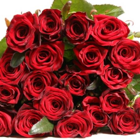 """Цветы - Розы """"Grand prix"""""""